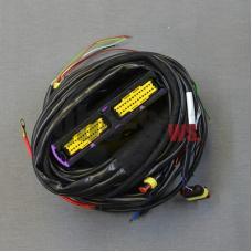 Проводка к газовому блоку управления STAG-300 ISA2 6 цил